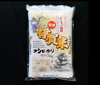 koshihikari[1]
